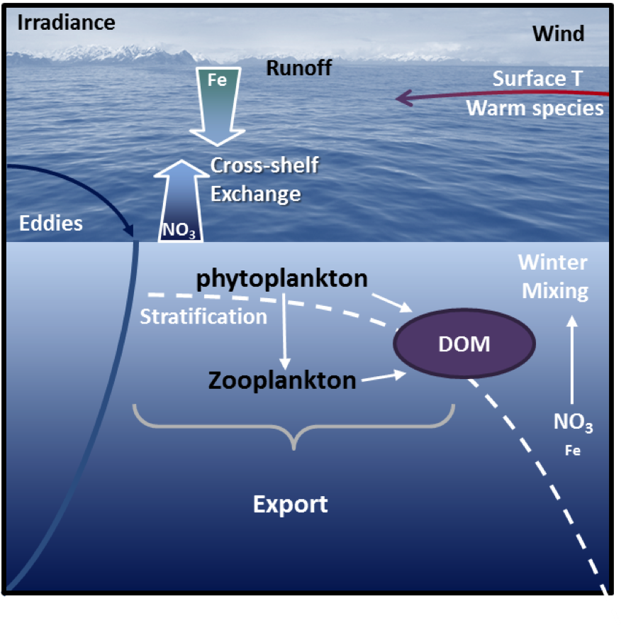 ecosystem drivers (pre-LTER)