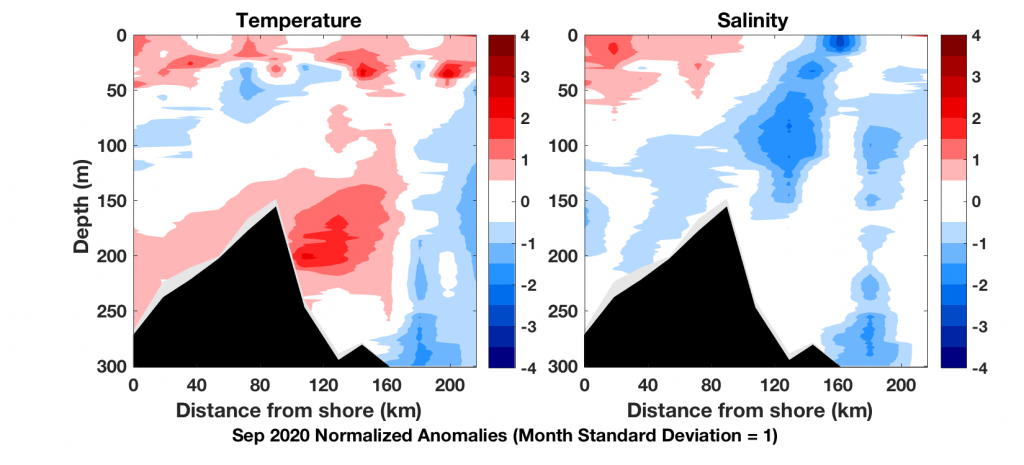 Temperature and salinity