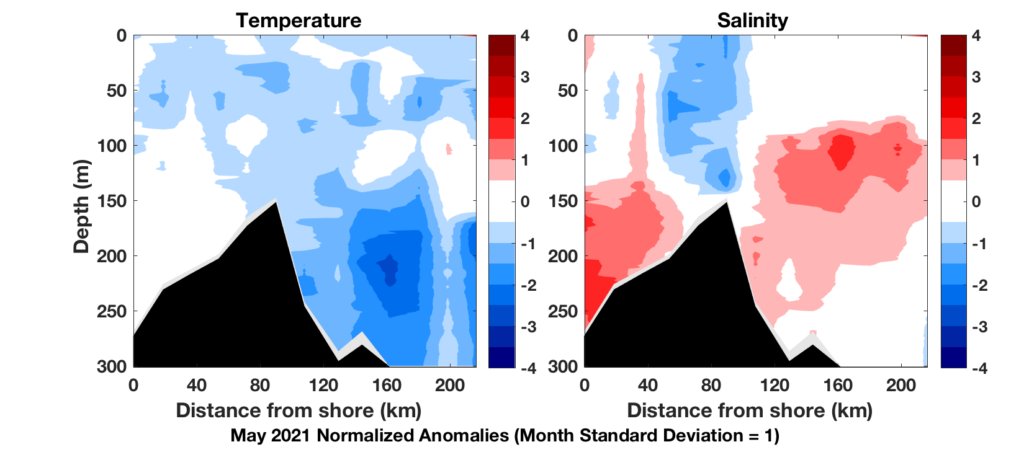 temperature and salinity plot